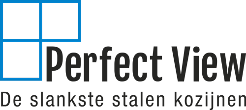 Perfect view logo